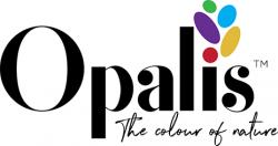 opalkis-heading-logo