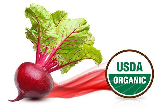 Raising The Standards Of Organic Food Coloring : Sensient Food Colors