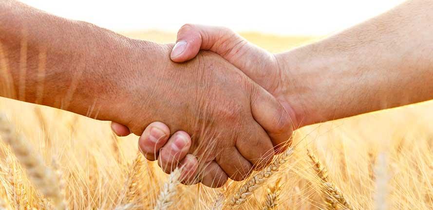 organic-handshake