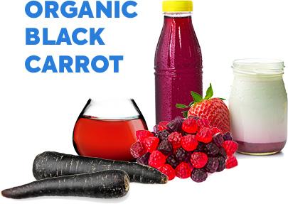 A Growing Portfolio of Certified Organic Food Colors - Sensient Food ...