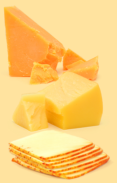 Say-Cheese-orange