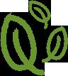 seed-shelf-leaves